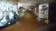 Galerie ouverte au public (70 m)