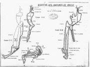 Ancienne topo du gouffre des Narines de Boeuf (S. Béroud)